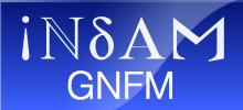 INDAM GNFM